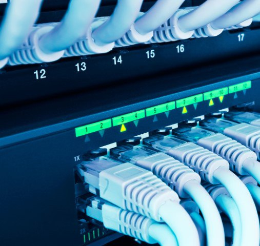 Network Switches a Commodity? Not Really